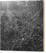 Skynet Wood Print