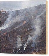 Slash And Burn Agriculture Wood Print