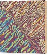 Slate Lm Wood Print
