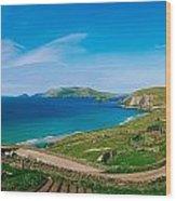 Slea Head & Blasket Islands, Dingle Wood Print by The Irish Image Collection