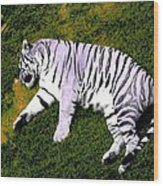 Sleepy Tiger 2 Wood Print