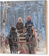 Sleigh Ride In The Frontenac Axis Wood Print