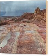 Slickrock Wood Print by Bob Christopher