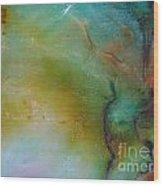 Sliding Rainbow 9 Wood Print