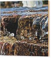 Sliding Water Wood Print