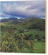 Slieve Bearnagh, Mourne Mountains, Co Wood Print