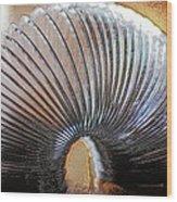 Slinky Wood Print