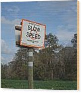Slow Down Wood Print