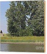 Small Barn Big Trees Wood Print