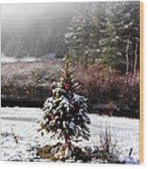 Small Christmas Tree Filtered Wood Print