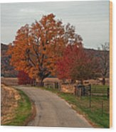 Small Country Road Wood Print