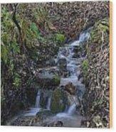 Small Creek Wood Print