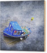 Small Fisherman Boat Wood Print by Svetlana Sewell