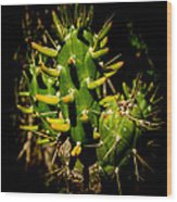 Small Green Cactus Wood Print