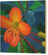 Small Orange Flower Wood Print