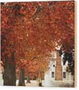 Small Town Autumn -1 Wood Print
