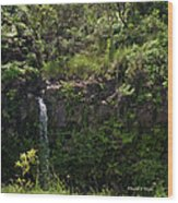 Small Waterfall - Hana Highway Wood Print
