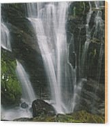 Small Waterfall Near The Milford Track Wood Print