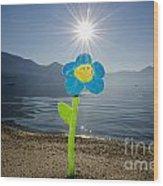 Smile Flower On The Beach Wood Print
