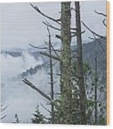 Smokey Mountain Forest No.612 Wood Print