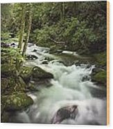 Smokey Mountain Stream No.312 Wood Print