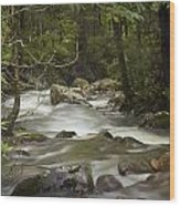 Smokey Mountain Stream No.326 Wood Print