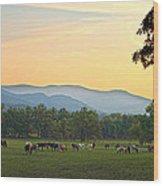 Smoky Mountain Horse Herd Wood Print