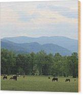 Smoky Mountain Pasture Wood Print