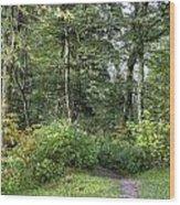 Smoky Mountain Path Wood Print
