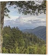 Smoky Mountain Vista Wood Print