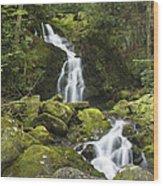Smoky Mountain Waterfall - Mouse Creek Falls Wood Print