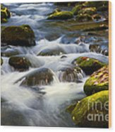 Smoky Mtn Stream Wood Print