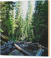 Snag On Iron Creek Wood Print