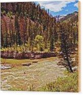 Snake River And Kayaker Wood Print