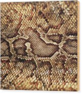 Snake Skin Wood Print by Abner Merchan