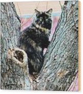 Snickers Caught In The Act Wood Print by Cheryl Poland
