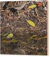 Snipe Hunt Wood Print
