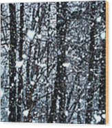 Snoball Flakes Wood Print