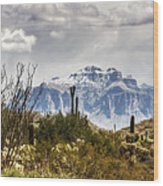 Snow Atop The Superstitions Wood Print