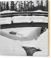 Snow Bridge In Canadian Rockies Wood Print