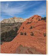 Snow Canyon 1 Wood Print