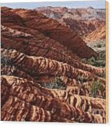 Snow Canyon 2 Wood Print
