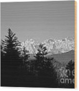 Snow-capped Mountain And Trees Wood Print