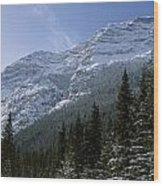 Snow Capped Mountain Wood Print