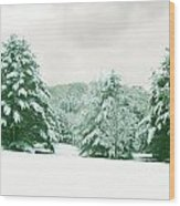 Snow Covered Countryside Wood Print