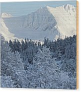 Snow Covered Mount Currie From Whistler Wood Print