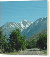 Snow Covered Pass Ahead Wood Print