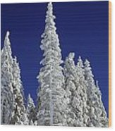Snow-covered Pine Trees Wood Print by Natural Selection Craig Tuttle