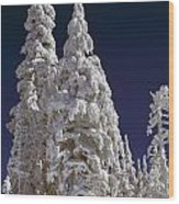 Snow-covered Pine Trees On Mount Hood Wood Print by Natural Selection Craig Tuttle