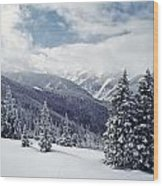 Snow Covered Pine Trees On Mountain Wood Print
